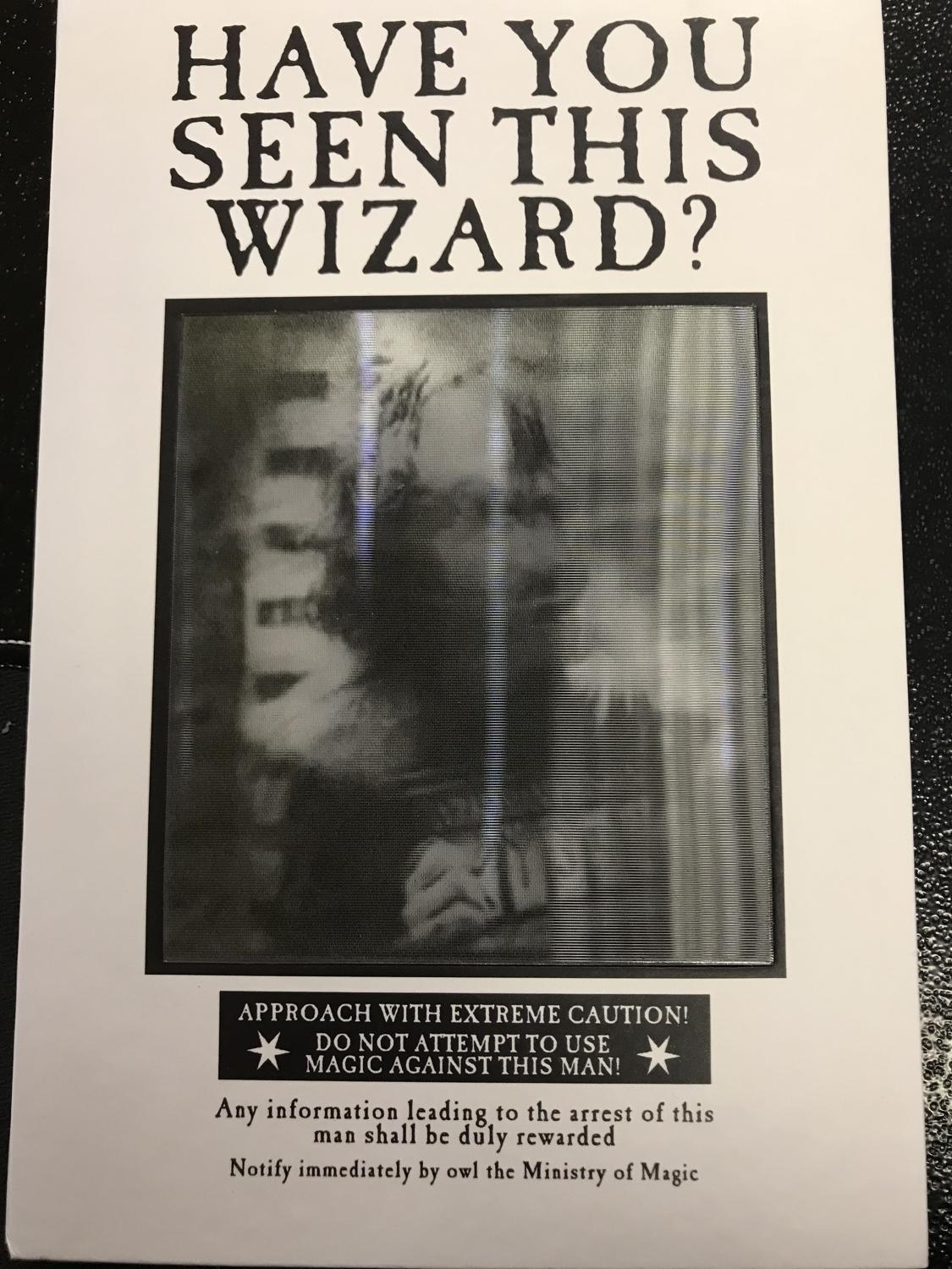 Have you seen this Wizard Lenticular Notebook